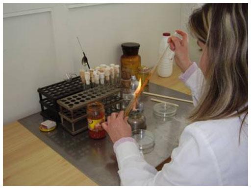 microbiolog2.jpg